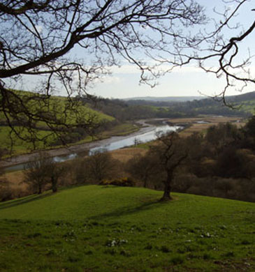 River Dart Totnes, within walking distance of The Grove, Bed and Breakfast, Totnes